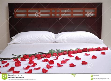 a bed of roses bed of roses stock photo image of furniture chagne