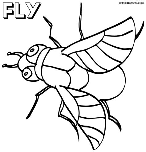 Fly Coloring Pages Coloring Pages To Download And Print Fly Coloring Page