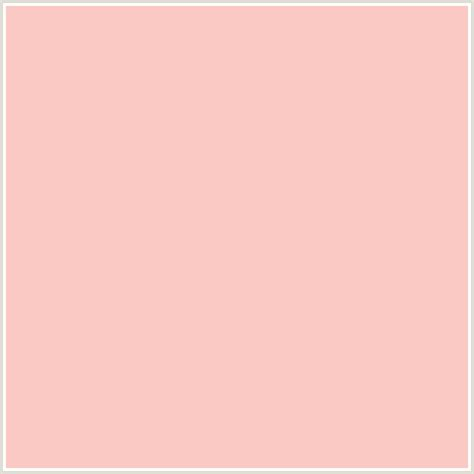 colours that go with peach fbc9c4 hex color rgb 251 201 196 apricot peach red