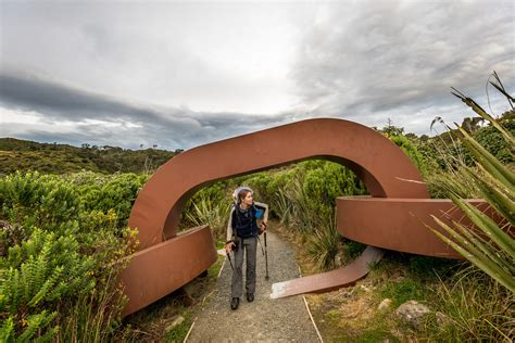 southland track 9 best hiking and walking spots in new zealand