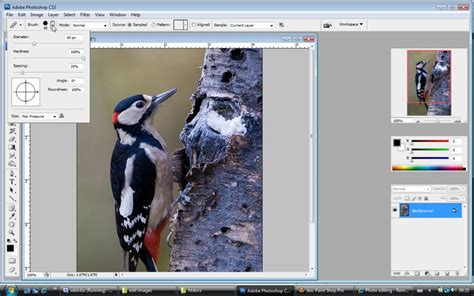 photoshop cs3 healing brush tutorial photoshop tutorial removing unwanted objects from your