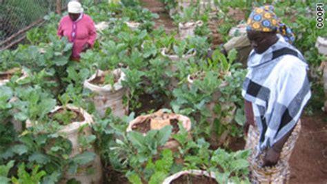 Kitchen Garden Farming In Kenya Farm In A Bag Offers Kenya Lifeline Cnn