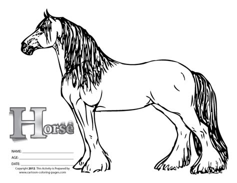 black and white coloring pages of horses printable horse colouring pages black white bebo pandco