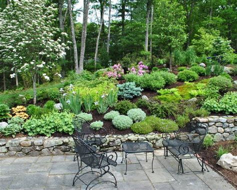 landscaping ideas for hillside backyard hillside landscaping fayetteville nc health board