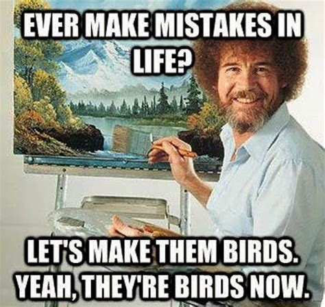 mistakes  life lets   birds yeah