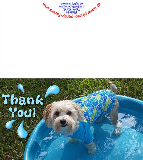printable thank you cards dogs the gallery for gt puppy saying thank you