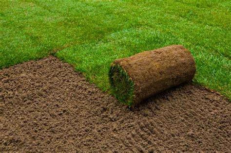 tappeto erboso prezzo prato a rotoli casasuper