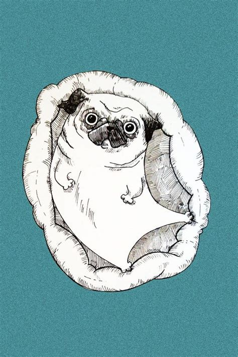 pug illustration 25 best ideas about pug illustration on