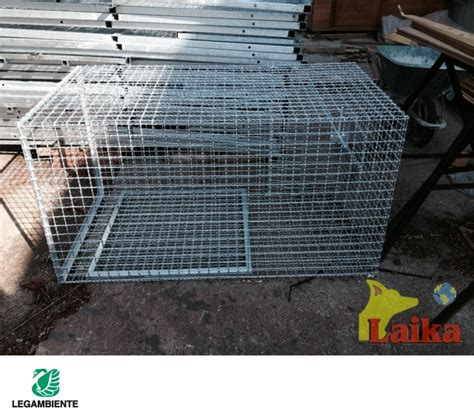 gabbia cattura gatti laika progettazione produzione e vendita di canili box