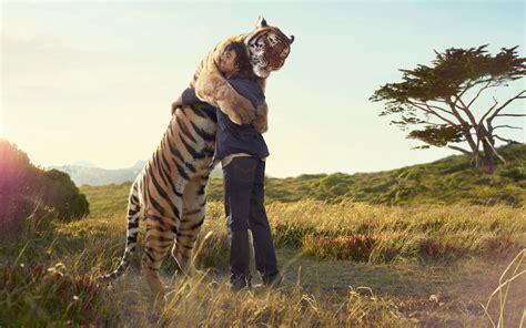 imagenes animales abrazados fondos de pantalla de tigre y hombre abrazados tama 241 o 1400x900