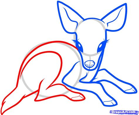 how to a deer how to draw a baby deer baby deer step by step forest animals animals free