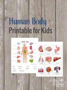 free human body printable for kids money saving mom 174