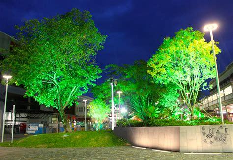 cairns lights eta lighting shields cairns qld 171 alia