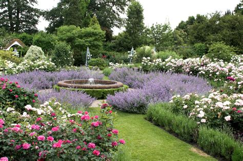 Hill Gardens by Borde Hill Garden