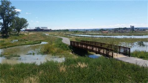 Clean Water Act Section 401 Summary by Shiloh Conservation Area Billings Montana Geum Environmental Consulting Inc