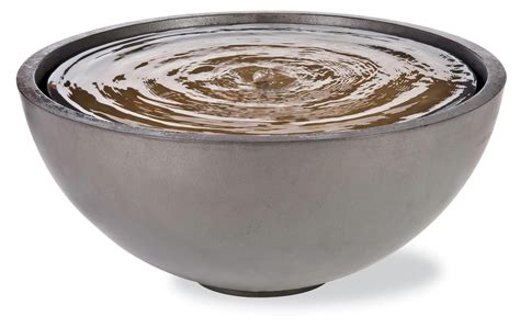 water bowl bowl