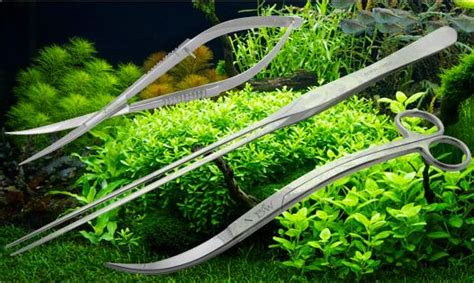 Pembersih Air Aquarium ikan pembersih aquascape akuarium ikan hias home design idea