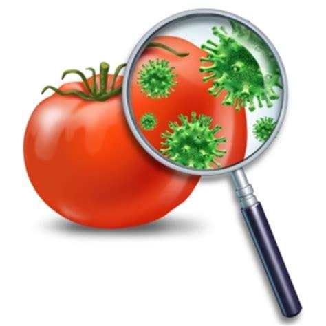 adulterazione alimentare sicurezza alimentare attenti alle frodi