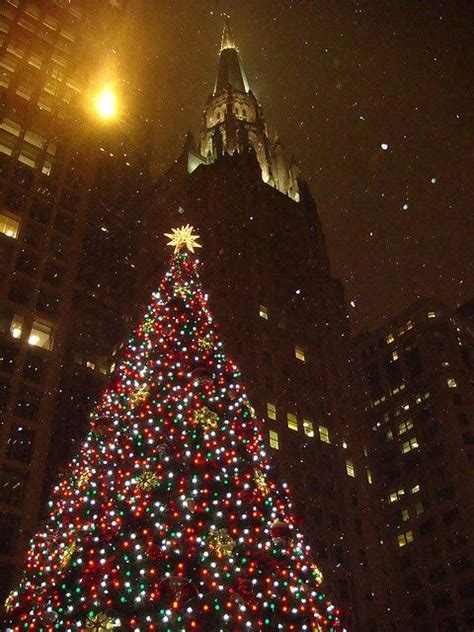 the city christmas tree pictures photos and images for