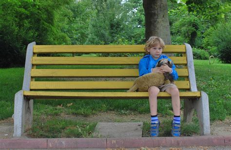 free stock photo of alone bench boy