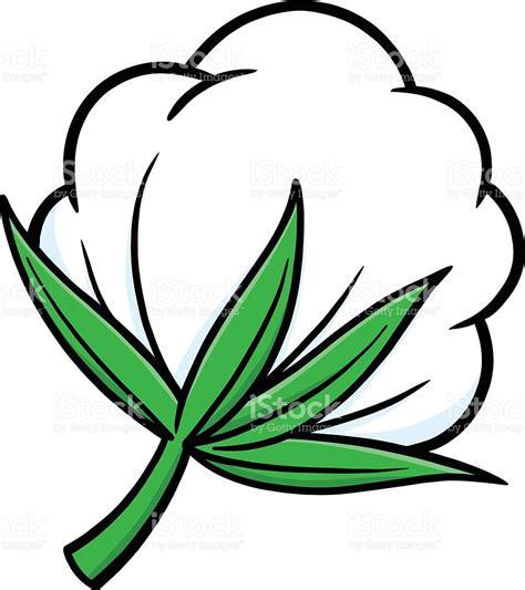 clipart vectors cotton plant clipart clipground