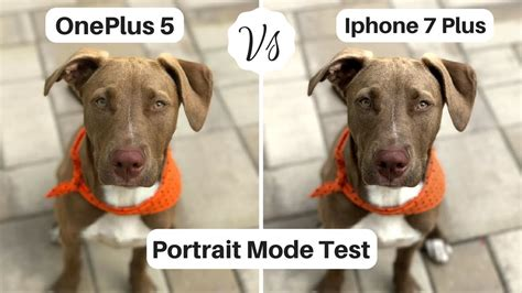 oneplus  camera  iphone   portrait mode test