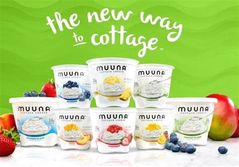 cottage cheese production dairy in the diaspora israeli firm s cottage cheese to