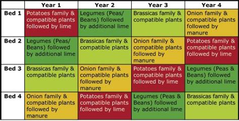 another crop rotation chart growing