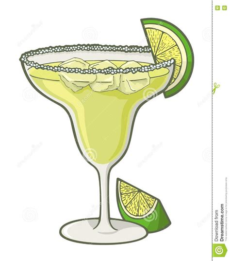 margarita drawing margarita illustrations vector stock images