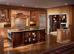 cabinet ideas for kitchens kitchen ideas kitchen design kitchen cabinets