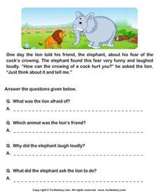 read comprehension and and answer the questions