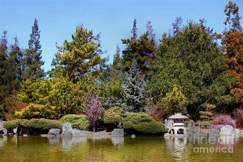 japanese friendship garden san jose california 7d12781