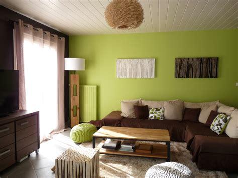 Charming Salon Gris Chaleureux  #3: Photo-decoration-deco-salon-vert-4.jpg