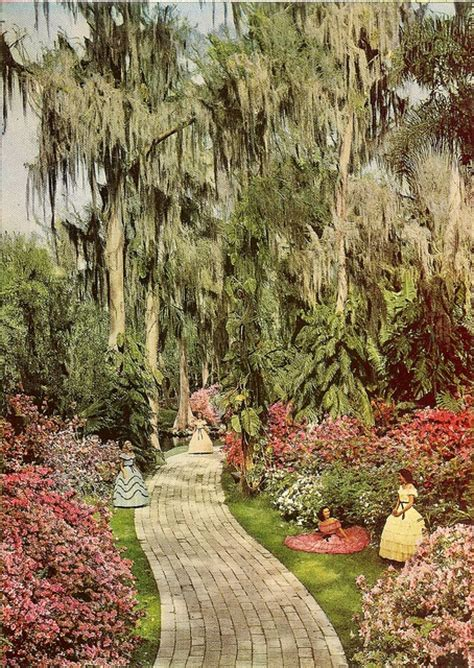 Cypress Gardens Flower Shop 17 Best Images About Cypress Gardens On Gardens Skiing And Postcards