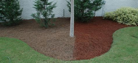 Mulch On Sale For A Color Max Home