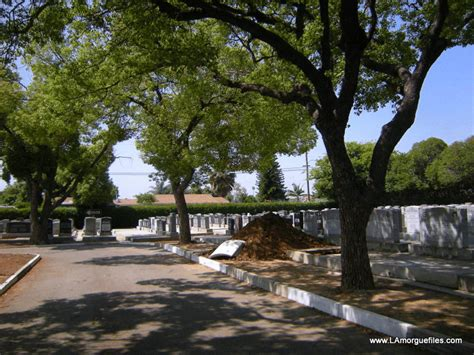 los angeles morgue files open grave at home of peace cemetery