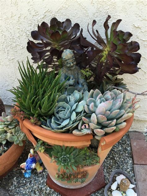 tips   succulent fairy gardens  broken pots