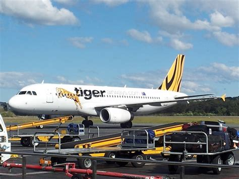 Kaos Pesawat Airbus A320 Gold airline service review tiger airways gold coast