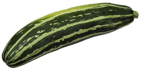 vegetables zucchini zucchini