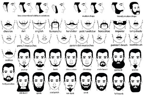 different types of beard styles on a black male a guide to facial hair types never use the wrong name