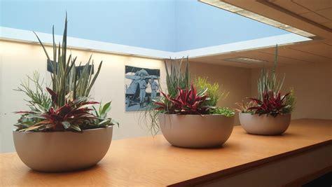 interior plant design plant professionals miami fl