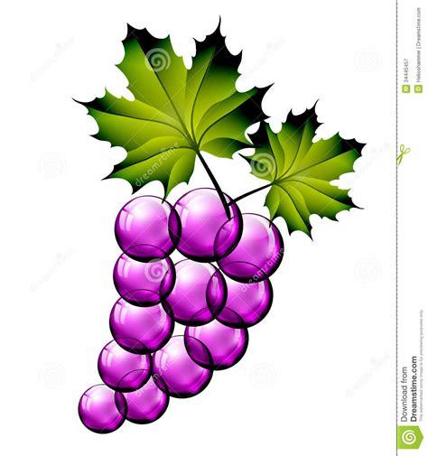imagenes de uvas vector uvas de cristal imagen de archivo imagen de rojo manojo
