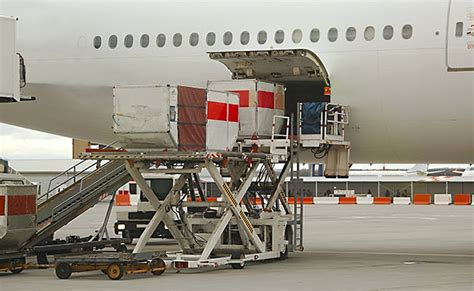 now an app for e clearance of cargo at delhi airport