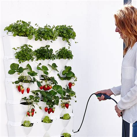 Mini Garden Vertical Minigarden Vertical Kitchen Garden Minigarden Uk