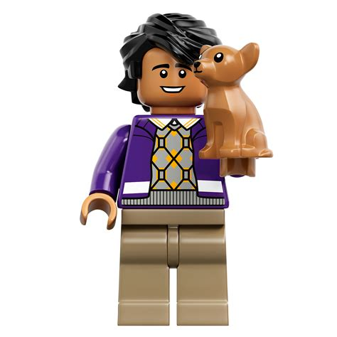lego  big bang theory set  minifigures include
