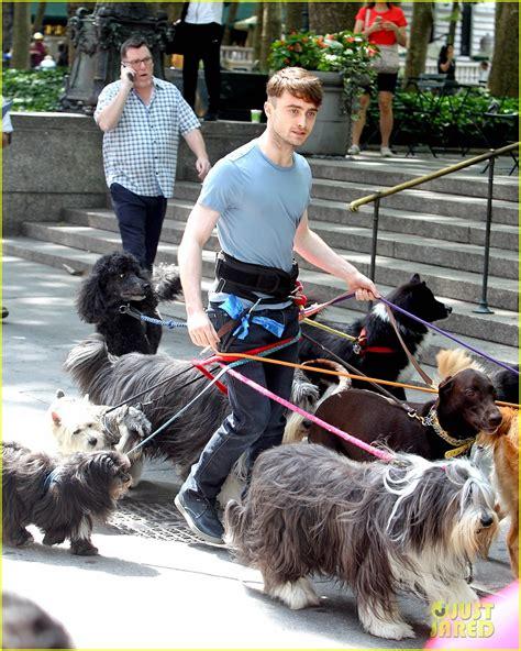 daniel radcliffe dogs ハリポタのダニエル ラドクリフ 超大量の犬と共にnyに現れる