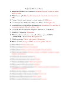 study guide mitosis and meiosis answers docx biology
