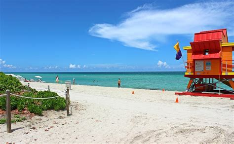 imagenes de north miami 106 free cheap things to do in miami this week miami