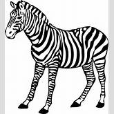 Zebra Clipart | Free Download Clip Art | Free Clip Art | on Clipart ...