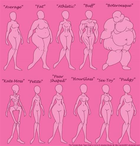 body types and shapes female body type chart intraday fun